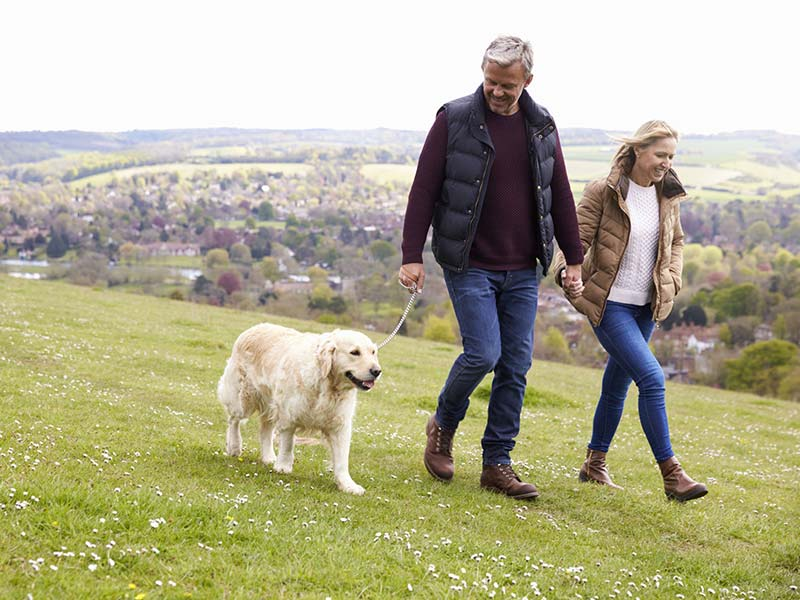The Main Benefits of Walking Explained in More Detail