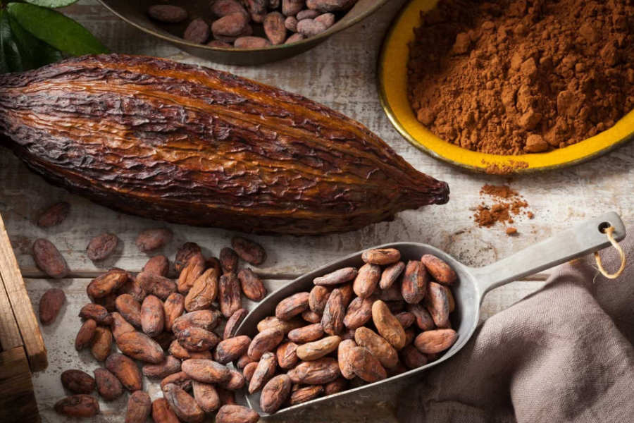 Cacao: Nutrition, Benefits and Healthy Recipes