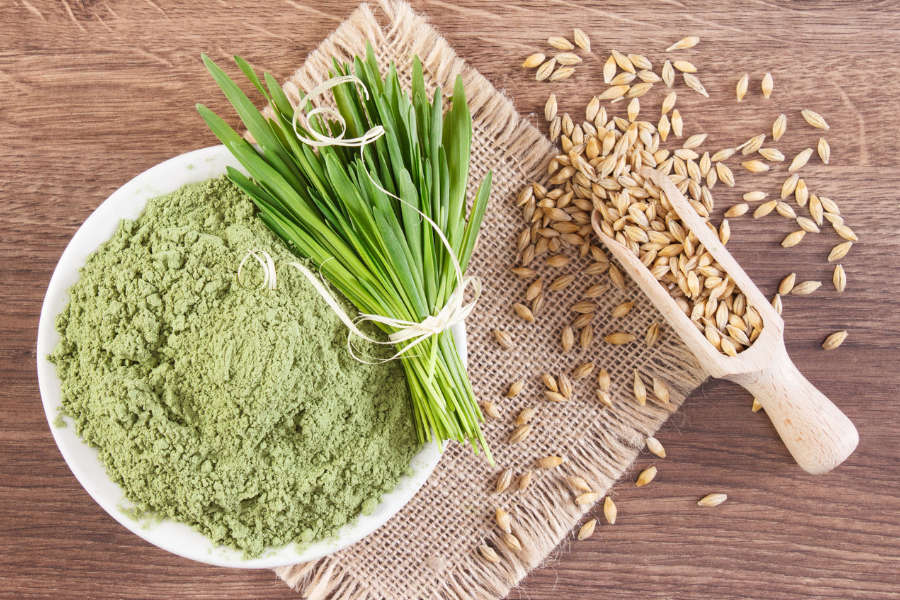 Barley Grass: Benefits, Uses, and Tips