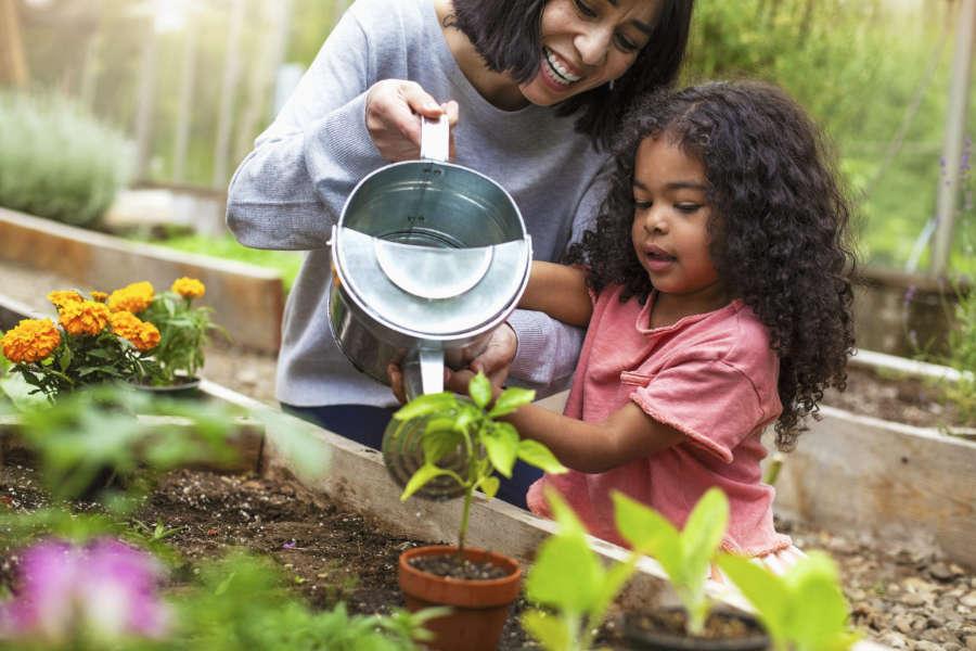 10 Benefits of Gardening - UK