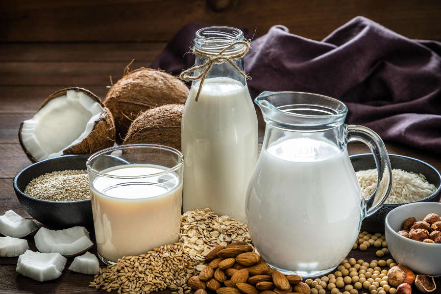 What Is Plant-Based Protein?